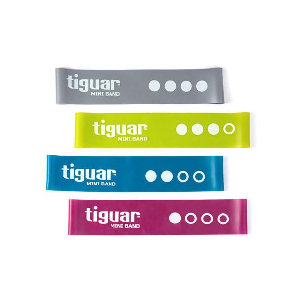 Tiguar Minibands, 4 Widerstände