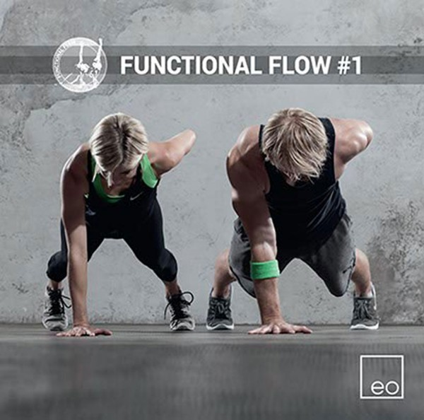 Functional Flow #1